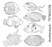 set coloring red sea fish... | Shutterstock .eps vector #797842108