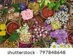herbs and flowers used in... | Shutterstock . vector #797848648