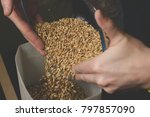 Small photo of Falling malt into a homemade mill for further grinding. Craft beer brewing from grain barley pale malt in process.