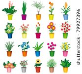 a set of colorful pots of... | Shutterstock .eps vector #79927396