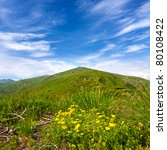 Summer scene in mountains - stock photo