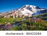 Mt Rainier National Park...