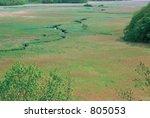 autumn scenery   Shutterstock . vector #805053