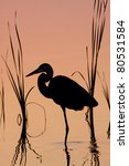 Silhouette Of Great Blue Heron...
