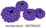 illustration of isolated... | Shutterstock .eps vector #80796652