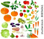 vegetables isolated collection | Shutterstock .eps vector #80856061