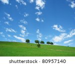 Trees With Blue Sky And Clouds 9