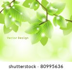eps10 vector abstract leaves... | Shutterstock .eps vector #80995636