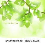 eps10 vector abstract leaves... | Shutterstock .eps vector #80995636