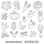 doodle fruits and vegetables... | Shutterstock .eps vector #81036232