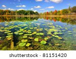 """""""autumn Calm""""  Brockway Lake ..."""