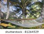 Hammock Between Palm Trees  ...