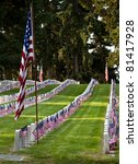 Us Military Cemetery Flying Th...