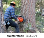a logger is cutting down a... | Shutterstock . vector #816064
