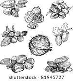 nuts | Shutterstock .eps vector #81945727