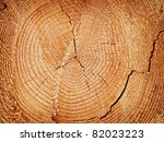 cut off log with the growth... | Shutterstock . vector #82023223