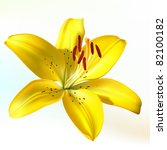 vector photo realistic vivid... | Shutterstock .eps vector #82100182