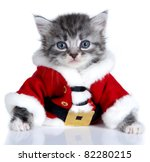Stock photo small kittens on a white background age month 82280215