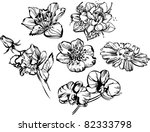 composition of flowers | Shutterstock .eps vector #82333798