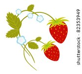 vector illustration of... | Shutterstock .eps vector #82353949