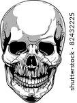 vector skull illustration | Shutterstock .eps vector #82432225