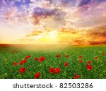 red poppies on green field | Shutterstock . vector #82503286