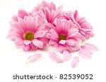 Blooming Beautiful Pink Flower...
