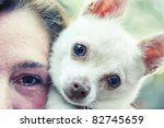 a chihuahua and his owner - stock photo