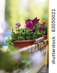 Flowerpot with lilac flowers in outdoor cafe - stock photo