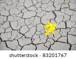 macro of survival flower during ... | Shutterstock . vector #83201767