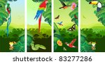 Set Of Jungle Banners With Fro...
