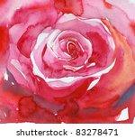 Big Red Rose . Watercolor