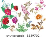 illustration with wild herbs... | Shutterstock .eps vector #8359702