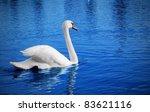 White Swan Floats In Blue Water ...