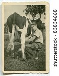 Vintage photo of young man milking cow (forties) - stock photo