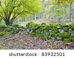 Old Mossy Stone Wall In The...