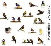 Group of  small birds on the...
