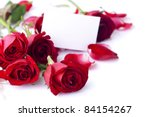 Stock photo red rose with petals and blank gift card for text 84154267
