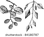 plants | Shutterstock .eps vector #84180787