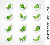 set of green leaves. floral... | Shutterstock .eps vector #84406933