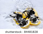 yellow snowshoe hiking in the ... | Shutterstock . vector #84481828