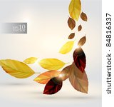 vector autumn leaves design | Shutterstock .eps vector #84816337