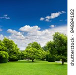 beautiful park trees over blue...   Shutterstock . vector #84884182