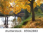 autumn in old park | Shutterstock . vector #85062883