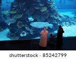 dubai  united arab emirates  ... | Shutterstock . vector #85242799