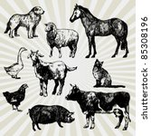 set of home animals hand drawn | Shutterstock .eps vector #85308196