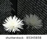 Vietnam Memorial 3 4 Scale