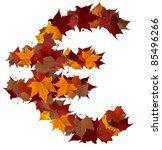 Euro currency symbol made with autumn leaves isolated on white. - stock photo