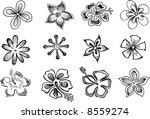 tropical sketch elements vector ... | Shutterstock .eps vector #8559274