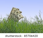 Dollars Growing From Grass